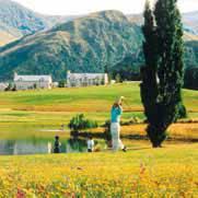 New Zealand Language Schools