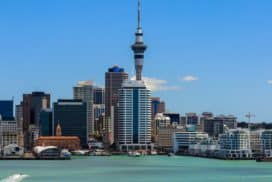 English Schools Auckland